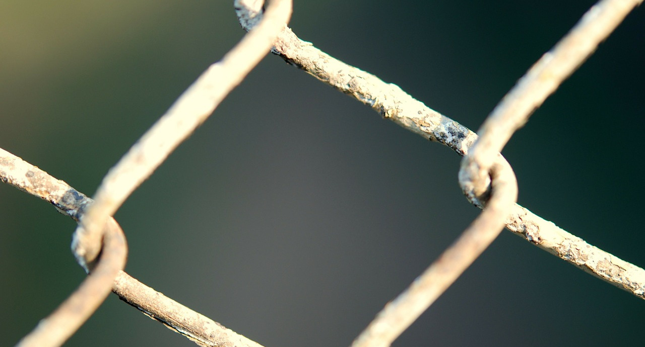 a closeup of a chain link fence